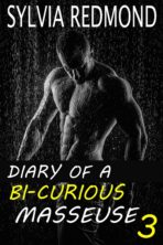 Diary of a Bi-curious Masseur 3