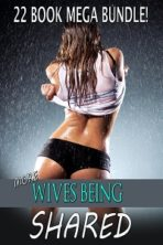 More Wives Being Shared: 22 Book Mega Bundle